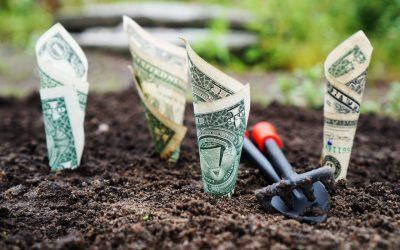 5 Best High-Interest Savings Accounts for 2021