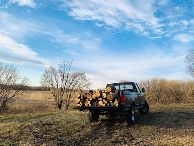 firewood pickup